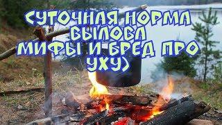 Суточная норма вылова рыболовами-любителями в брянской области