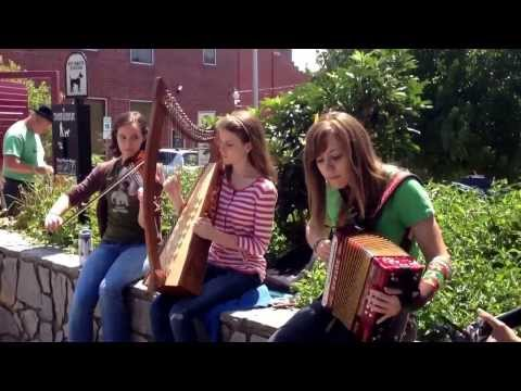 A video of me playing some accordion with my old band, The Dandeggans.  Traditional Irish tune.