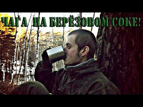 Чай из чаги на Берёзовом соке!