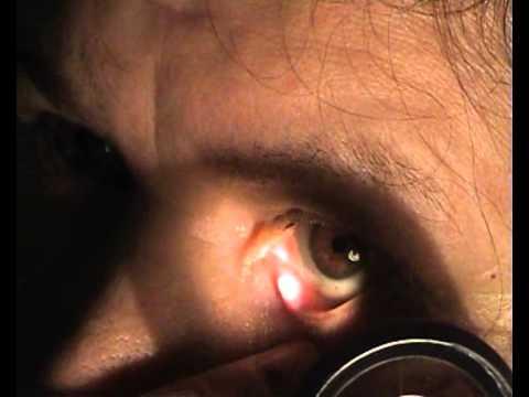 Очки от зрения в алматы