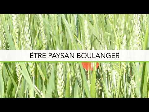 ETRE PAYSAN BOULANGER