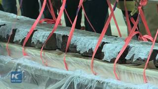 Egypt inaugurates makeshift lab to restore Khufu's Sun Boat