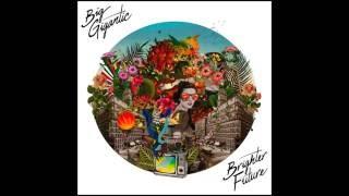 Brighter Future   Big Gigantic (ft. Naaz)