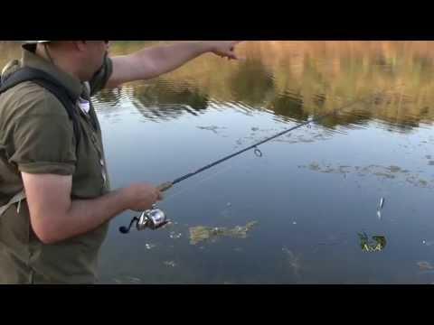 La pesca su una filatura di una stagione