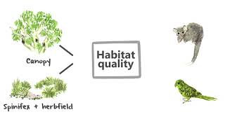 What do we offset? – how do we describe and measure biodiversity for the purposes of offsetting
