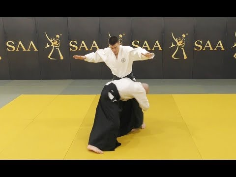 Aikido Ude Garami Instructional