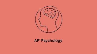 AP Psychology: 3.1, 3.3 Sensation and Visual Anatomy