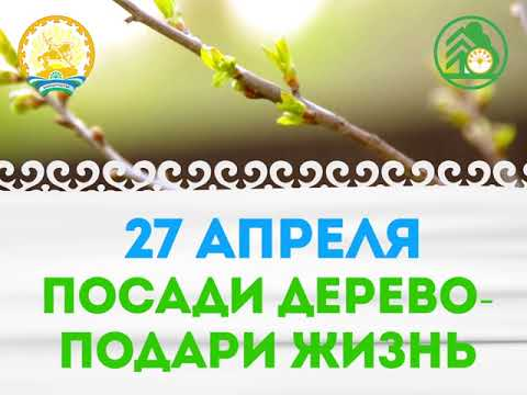 Посади дерево - подари жизнь!