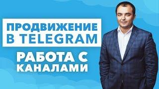 Продвижение в Telegram. Как работать с каналами в Telegram.