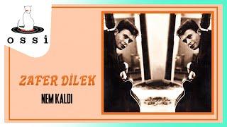 Zafer Dilek / Nem Kaldı