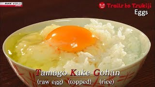 Eggs of Excellence - TRAILS TO TSUKIJI