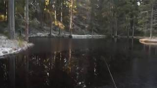 Озеро в яльгелево рыбалка