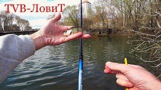 Поплавочная весенняя рыбалка | Ловля рыбы под ногами не далеко от дома!