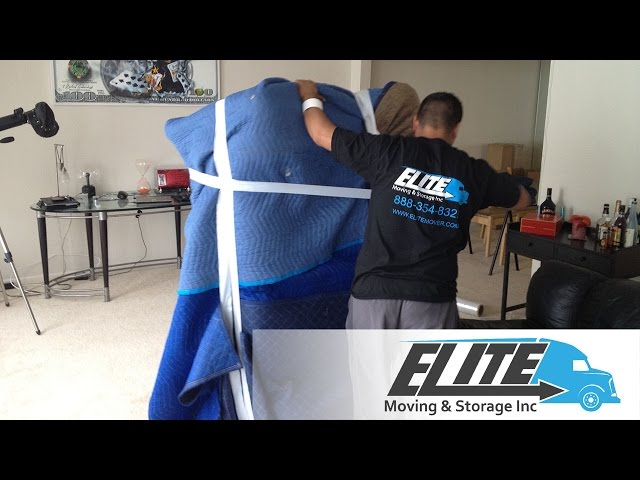 Elite Wrapping Couch