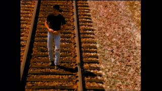 Tim McGraw – Everywhere (Official Music Video)