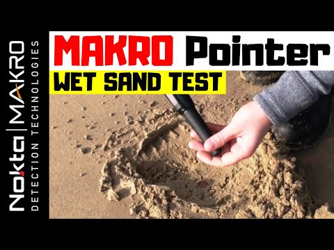 Makro Pointer - Wet Beach Mineralised Sand Test