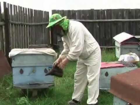 Пчеловодство.Норвежский метод зимовки