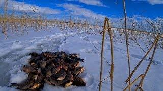 Рыбалка на озере сухмень курганская область