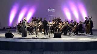 """""""Wieczór muzyki rozrywkowej XXw"""" Koncert orkiestry symfonicznej SONUS 2014r"""