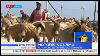 Lamu Island has more than 3,000 donkeys and for many years this has been the only mode of transport