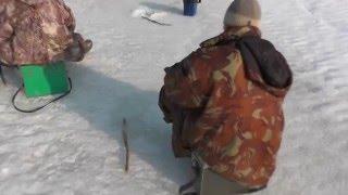 Лучшие места для рыбалки в марий эл