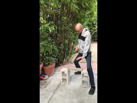 Qigong - Iron Palm - 62 year young Vedic Priest breaks brick