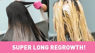 Guide To Bleaching LONG Dark Roots Without Breakage + Grey Formulas - Dearmiju