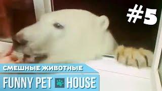 СМЕШНЫЕ ЖИВОТНЫЕ И ПИТОМЦЫ #4 СЕНТЯБРЬ 2018 [Funny Pet House] Смешные животные