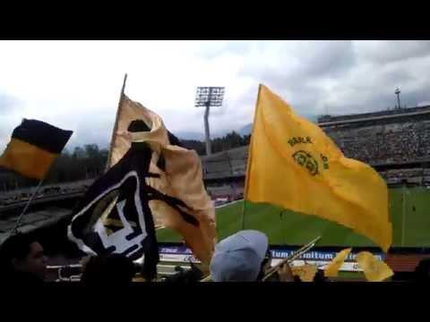 """""""negro jose,la rebel car'sc"""" Barra: La Rebel • Club: Pumas"""