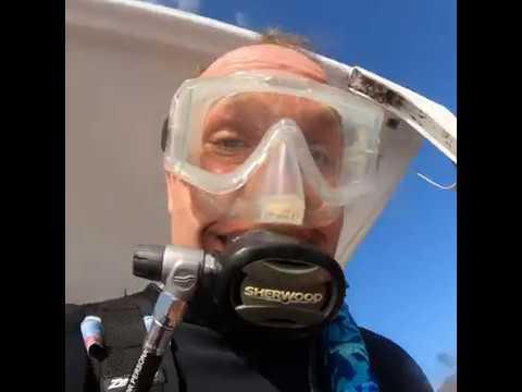 CoZuMel 2019 Fall Wed  Nov 27 Hump Day Diving