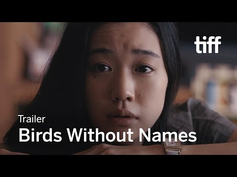 BIRDS WITHOUT NAMES Trailer   TIFF 2017