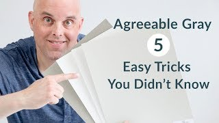 Agreeable Gray 5 Easy Tricks You Didnt Know