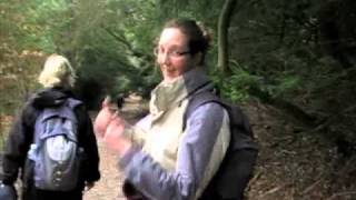 preview picture of video 'Box Hill Walk 5 February 2011'