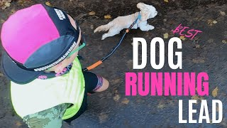 Best Dog Leash For Running with your Dog | Best Lead For Running With Your Dog