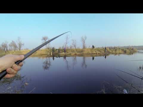 Рыбалка красный маяк днепропетровск
