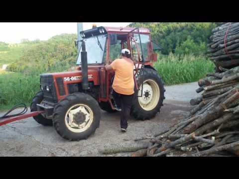 Taglio della legna Giorgio Menti Monteviale