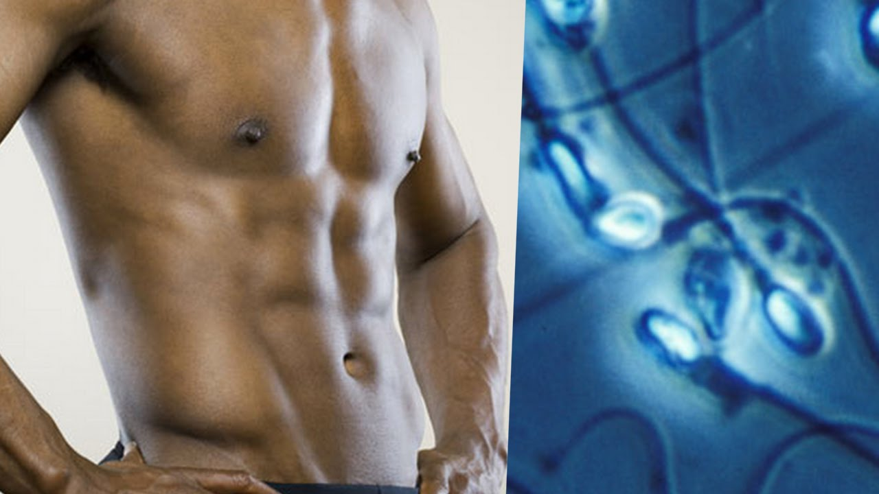 Handsome Men Have LOW Quality Sperm (Study) thumbnail