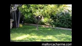 preview picture of video 'Llubi 034,  Dorfhaus - Finca -   Ferienwohnung auf Mallorca, Mieten sie mit mallorcacharme.com'