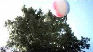 Dropkick Murphys - The State Of Massachusetts [Official Music Video]