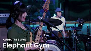 Picture of a band or musician: Elephant Gym
