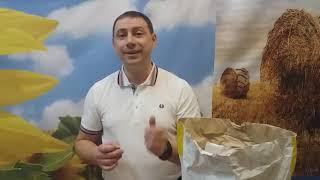 Цена на подсолнечник ЯСОН  Фракция 3,0-3,25. Купить урожайный и масличный гибрид ЯСОН в Украине. от компании ТД «АВС СТАНДАРТ УКРАЇНА» - видео