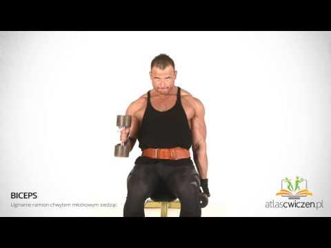 Jak skutecznie działać dla mięśni