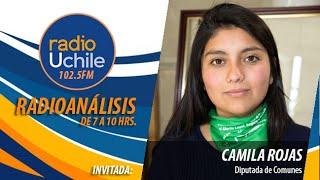 Camila Rojas se refiere a la acusación constitucional contra Raúl Figueroa