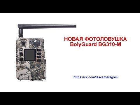 Фотоловушка Bolyguard BG310-М обзор функции.
