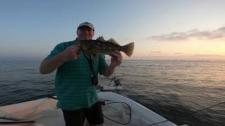 Fly Fishing for Calico Bass in San Diego