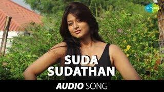 Nagaraja Cholan MA MLA | Suda Sudathan song