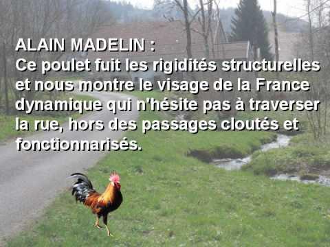 pourquoi le poulet a-t-il traversé la route