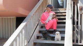 Paris Hilton's Home Activities: Malibu Quarantine Edition