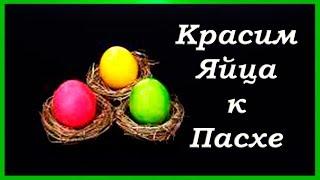 Яйца на Пасху Как покрасить яйца к Пасхе натуральными красителями! / Яркие пасхальные яйца