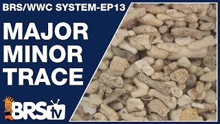 How do you add major, minor and trace elements to your reef? - The BRS/WWC System Ep13 - BRStv